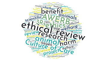 Ethical review wording