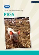 RSPCA welfare standards for pigs - RSPCA