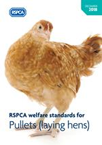 Welfare standards for pullets cover
